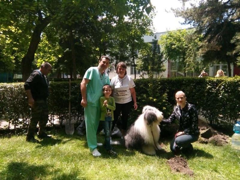 "Доброволци преобразиха двора на Клиниката по педиатрия на УМБАЛ ""Свети Георги"""