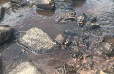 Розоварна в карловското село Слатина замърсява реката, три институции пристигнаха на проверка
