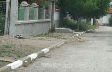Змии плъзнаха и притесниха хората в Първомайско