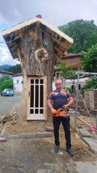 300-годишна топола в Сопот се превръща в библиотека на открито