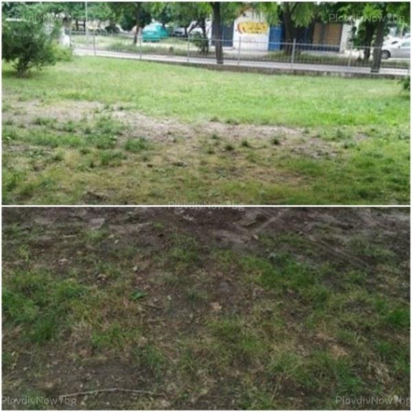 Зелени площи или кал?  Парк в Кючука изпадна в неугледно състояние