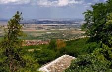 Бракониер уби глиган край Куклен, друсан шофьор хванаха в Асеновград
