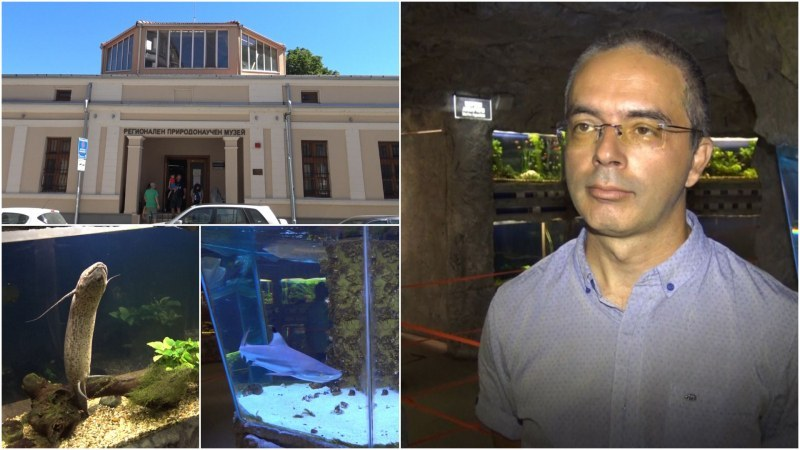 Пловдив ще има най-големите морски аквариуми в България
