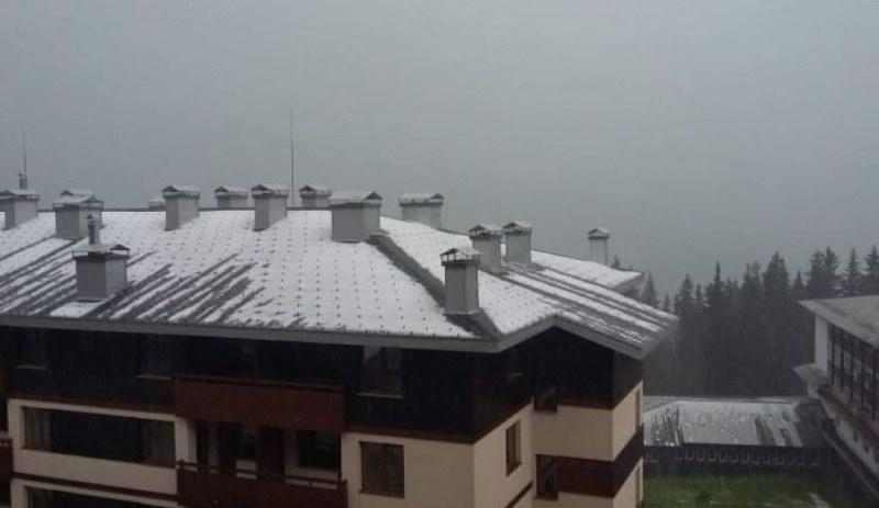 Градушка се изсипа над Пампорово, курортът побеля, все едно е паднал сняг