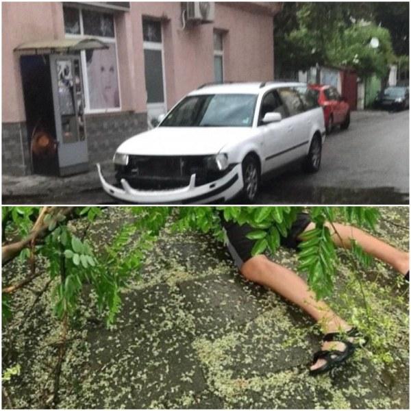 Два инцидента в Кючука! Две коли се удариха, дърво затисна човек