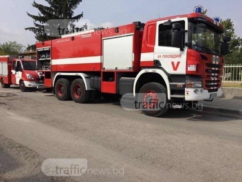 Пожарникарите и дъждът потушиха големия пожар край село Драгомир
