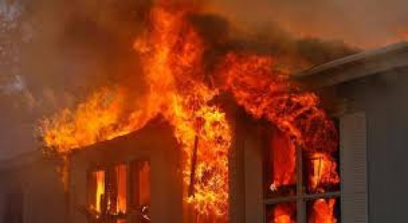 Четири вили изгоряха край Калояново