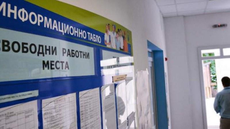 """Каква работа предлага в момента бюро по труда """"Марица""""?"""