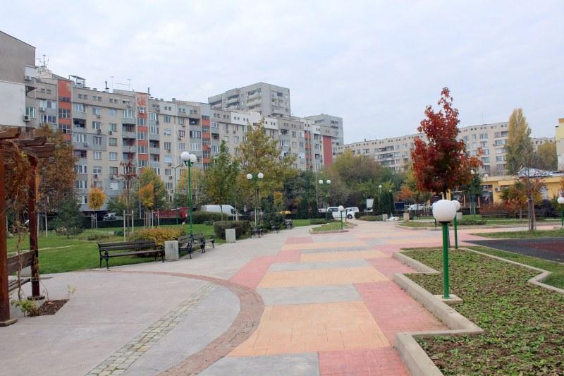 35 нови дръвчета пуснаха корени пловдивски парк, хиляди цветя ще го красят напролет