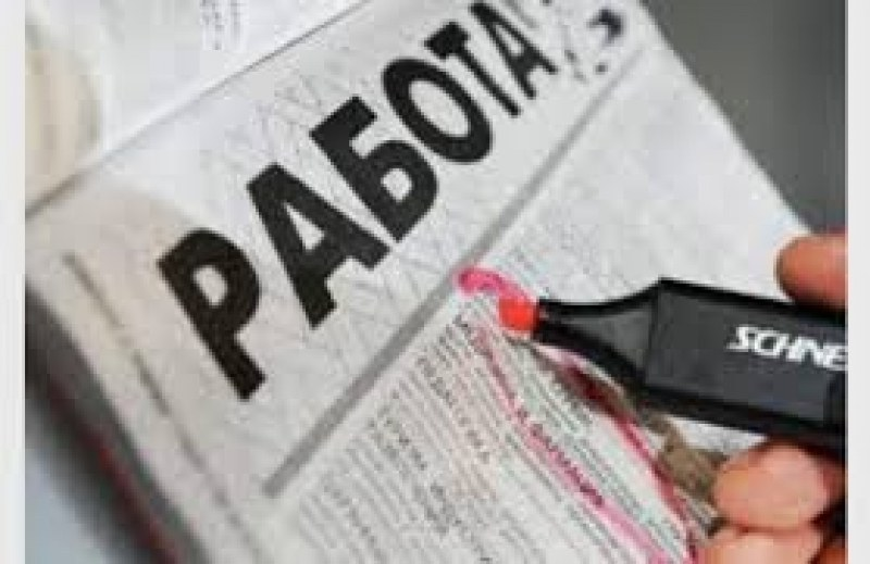 """Бюро """"Марица"""" обяви близо 290 свободни работни места в момента"""