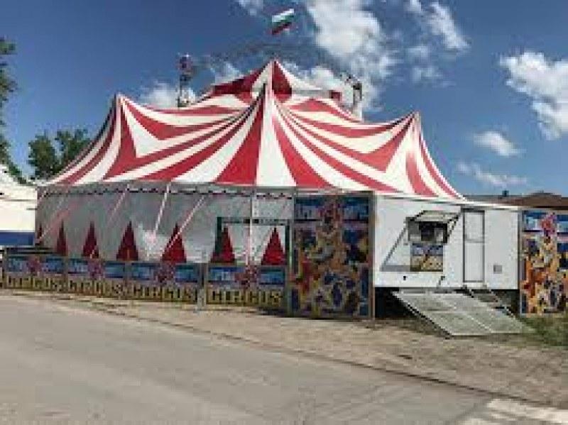 Цирк зарадва с безплатни билети 100 деца в Пловдив