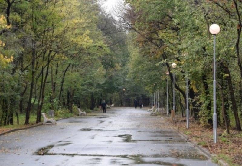 60 дръвчета пускат корени днес в парк Лаута, засадени от пловдивски спортисти