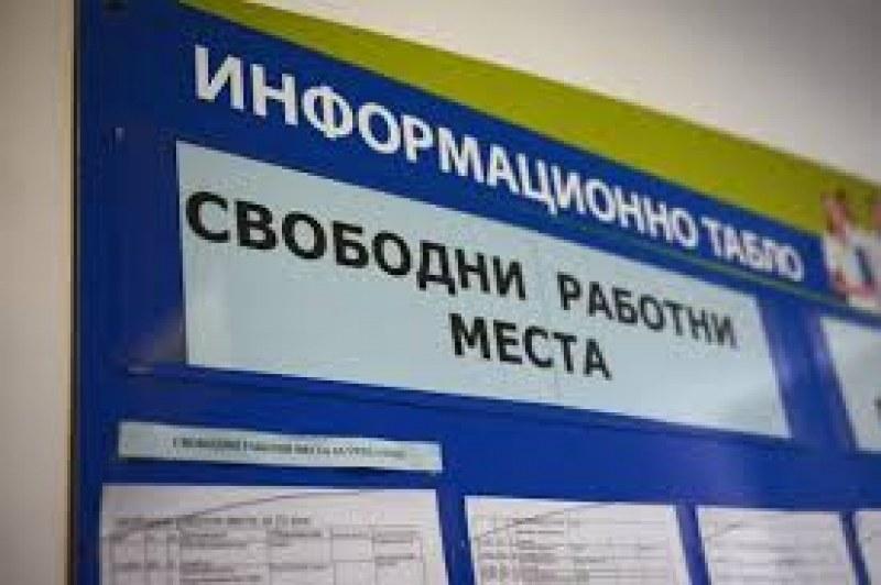 Работа в Първомай и Садово - обявиха 38 свободни места към момента