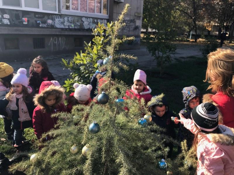 Мъници сложиха коледна украса на новозасадени борчета в Пловдив