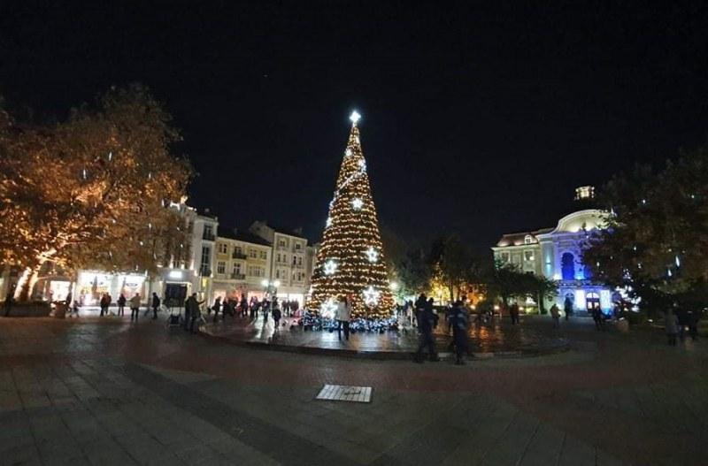 Елхата в Пловдив грейна, празничният дух се настани в града