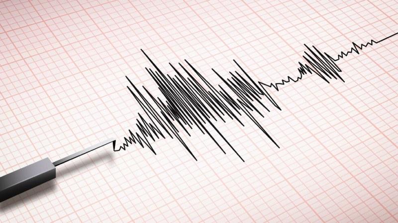 Земетресение регистрирано край Лъки
