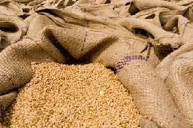 43-годишен от Калояновско открадна ... пшеница и слънчоглед