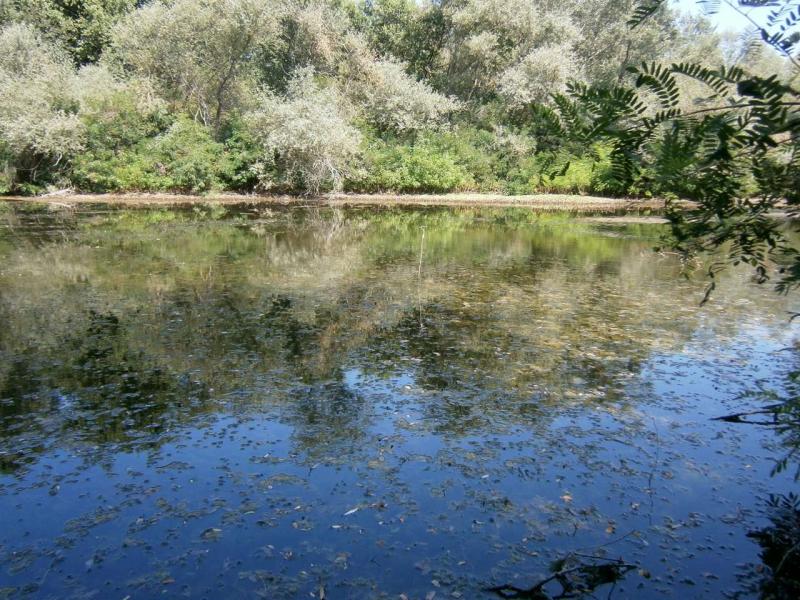 Нова защитена зона край Стряма, Скутаре, Калековец и Маноле