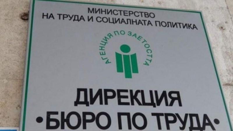 Работа в Първомай и Садово - обявиха 90 свободни места
