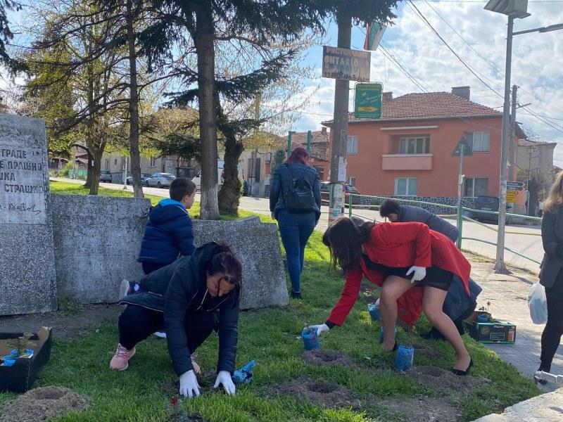 Речено-сторено! 145 рози пуснаха корени в Перущица за 145 години от Априлската епопея