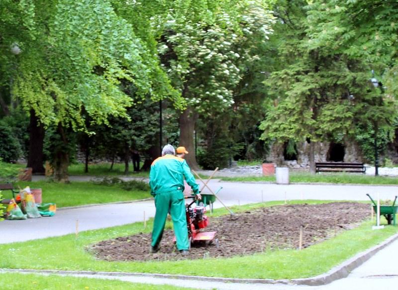 """ОП """"Градини и паркове"""" търси сезонни работници в Пловдив"""