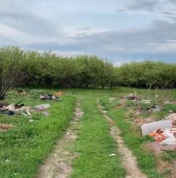 Ябълковите градини край Коматево превърнати в огромно бунище