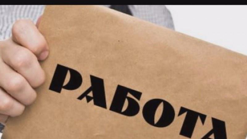 Работа в Асеновградско - за счетоводители, шивачи, монтажници, машинни оператори, готвачи, бармани