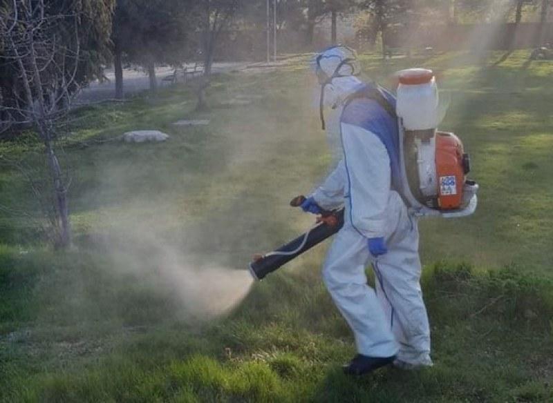 Пръскат срещу опасни насекоми в Куклен
