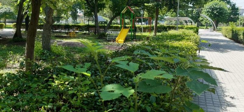 Нови съоръжения за игра чакат децата в градския парк на Съединение