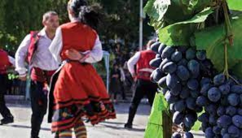Събор на лозарите в Брестовица, на сцената - фолклорни изпълнители от цяла България
