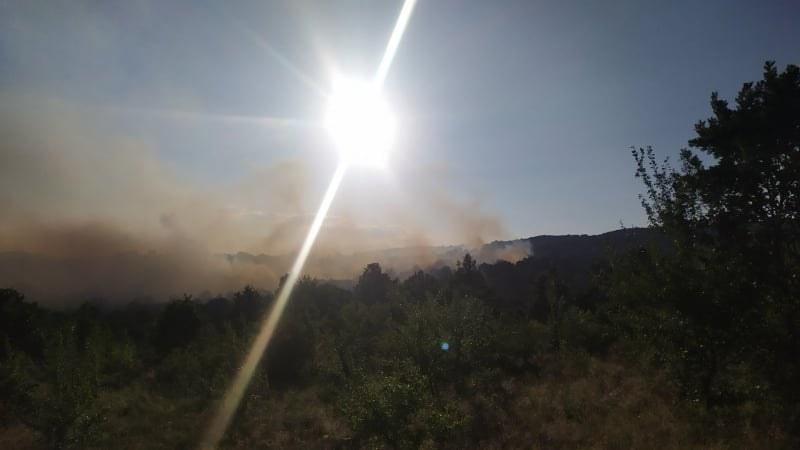 Потушиха горския пожар в Хисарско