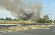 Пак пожар! Запалиха се дървета и треви край изход на Пловдив
