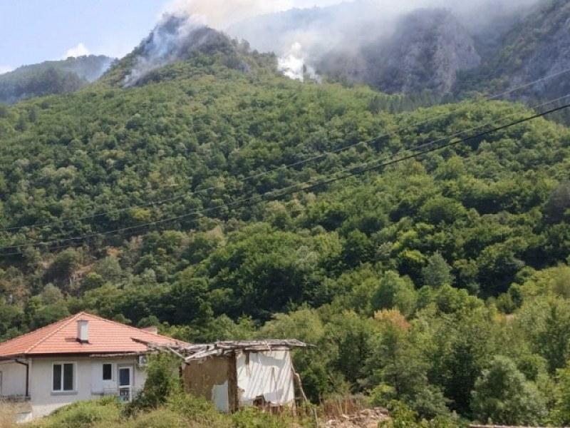 Молебен и курбан в Югово за благодарност към пожарникарите и доброволците