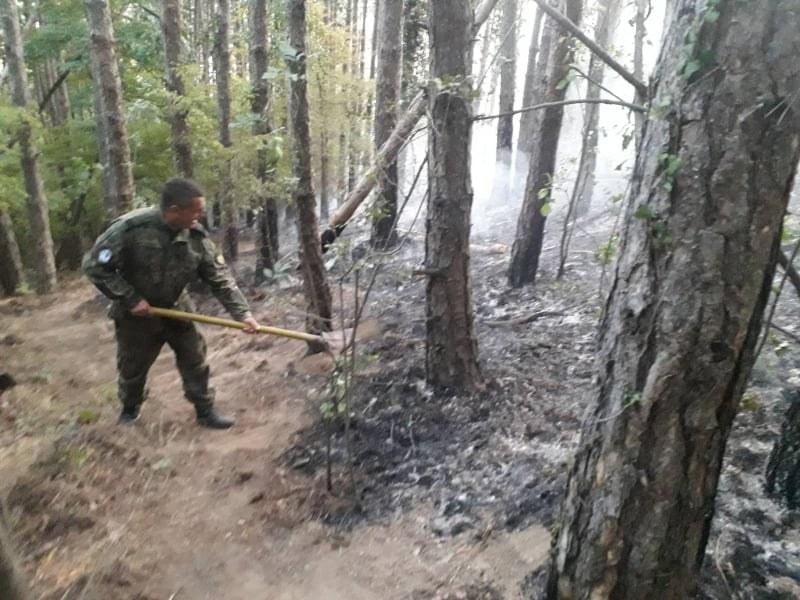 30 военнослужещи от 61 Механизирана бригада участват в гасенето на пожар, възникнал над  Карлово