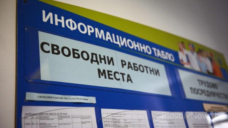 Работа в Карлово и Сопот - ето свободните места в момента